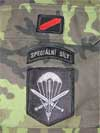 Shoulder Sleeve Insignia for uniform mod. 85 with print.jpg, 13 kB